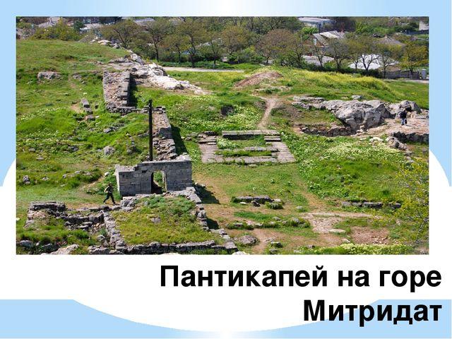 Пантикапей на горе Митридат