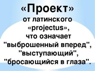 """«Проект» от латинского «projectus», что означает """"выброшенный вперед"""", """"высту"""