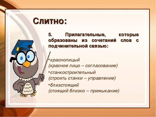5. Прилагательные, которые образованы из сочетаний слов с подчинительной связ...