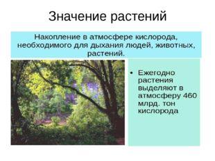 Значение растений