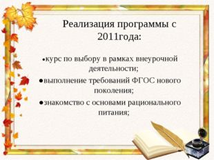 Реализация программы с 2011года: ●курс по выбору в рамках внеурочной деятельн