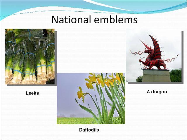 Leeks A dragon Daffodils