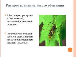 Распространение, место обитания В России распространен в Воронежской, Ростовс