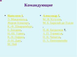 Командующие Наполеон I, Э. Макдональд, Жером Бонапарт, К.-Ф. Шварценберг, Е.