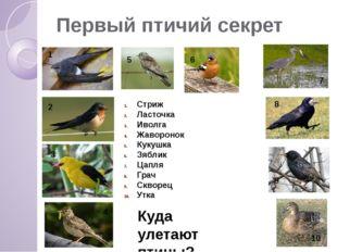 Первый птичий секрет 1 2 3 4 5 6 7 8 9 10 Куда улетают птицы? Стриж Ласточка