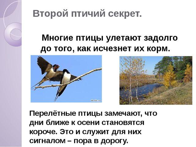 Второй птичий секрет. Многие птицы улетают задолго до того, как исчезнет их к...