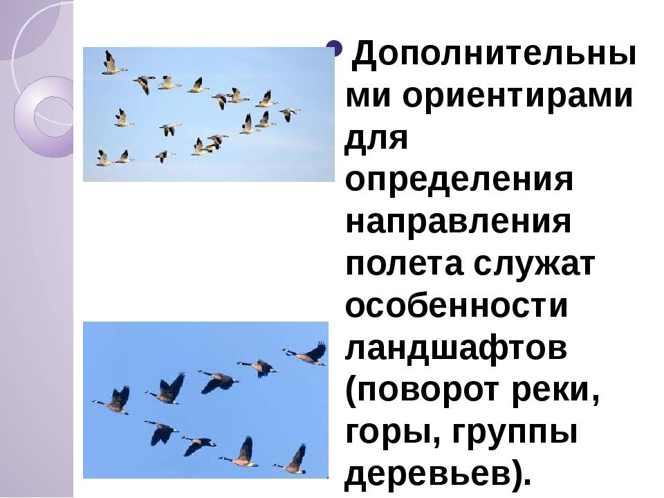 Дополнительными ориентирами для определения направления полета служат особен...