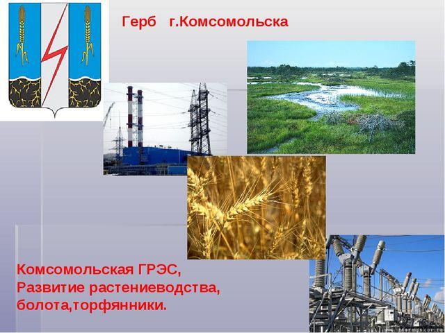 Герб г.Комсомольска Комсомольская ГРЭС, Развитие растениеводства, болота,торф...