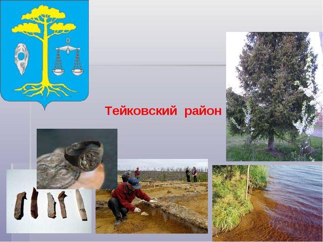 Тейковский район