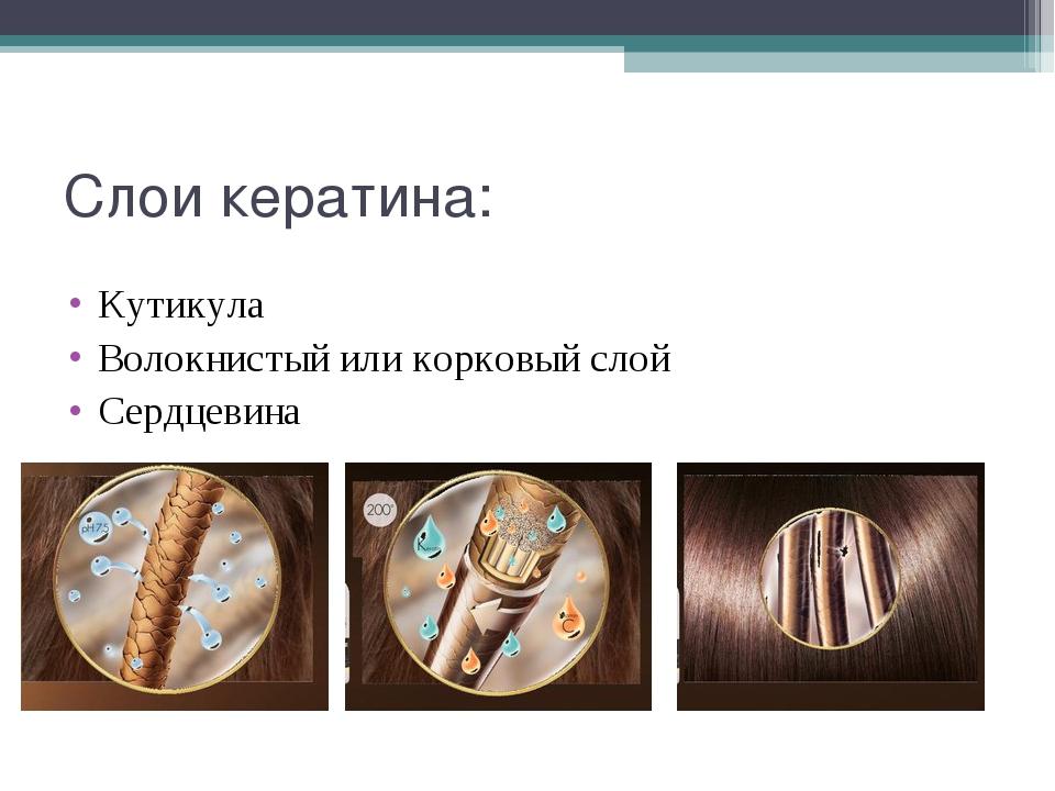 Слои кератина: Кутикула Волокнистый или корковый слой Сердцевина