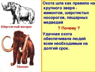 Охота шла как правило на крупного зверя - мамонтов, шерстистых носорогов, пещ
