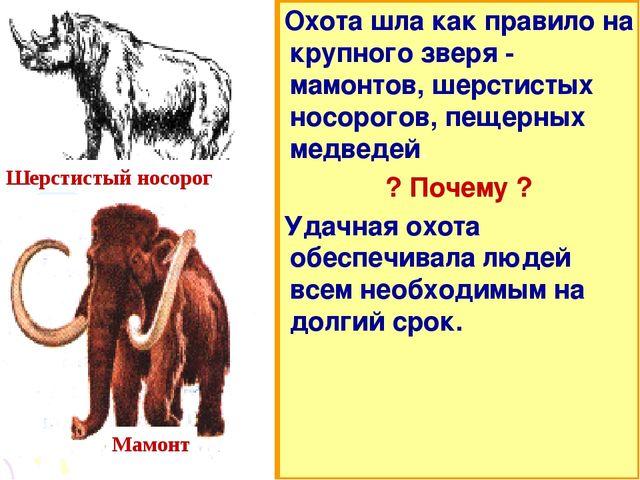 Охота шла как правило на крупного зверя - мамонтов, шерстистых носорогов, пещ...