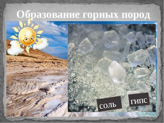 Образование горных пород соль гипс