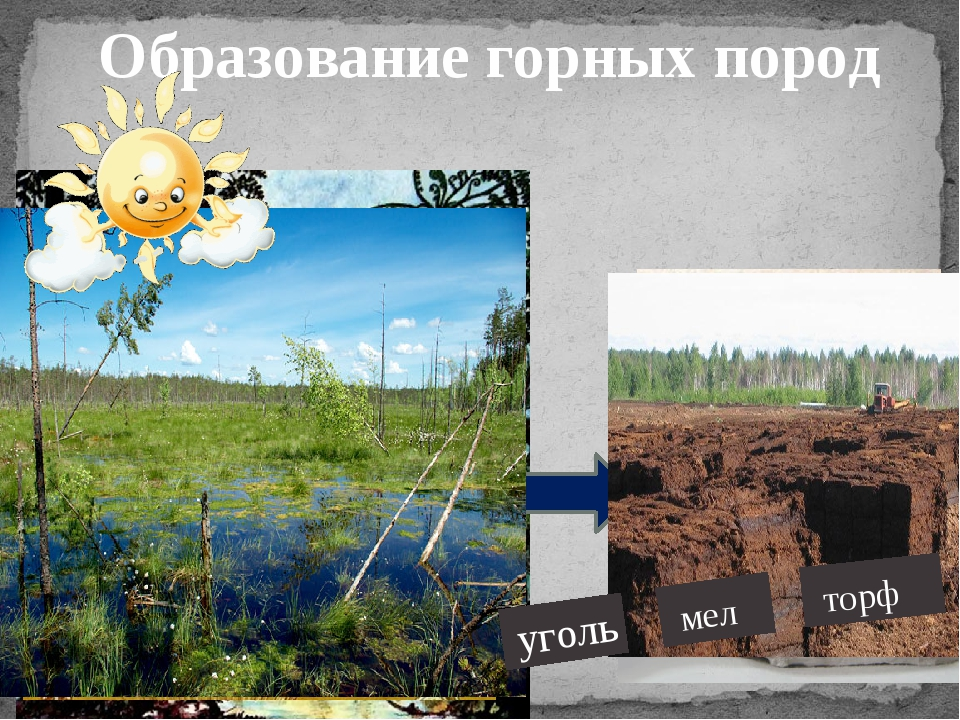 Образование горных пород уголь мел торф