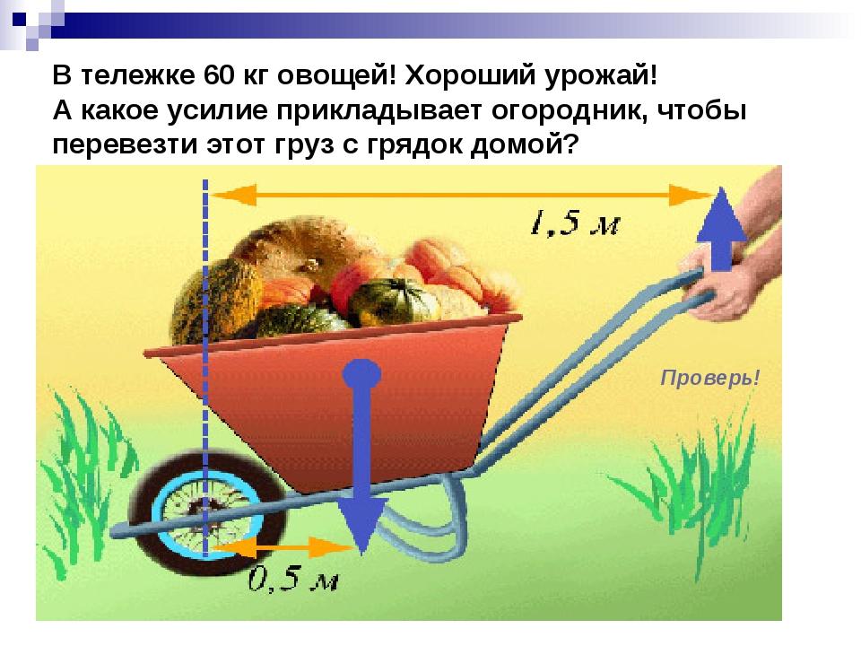 В тележке 60 кг овощей! Хороший урожай! А какое усилие прикладывает огородник...