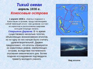 Тихий океан апрель 1836 г. Кокосовые острова 1 апреля 1836 г. «Бигль» подошел