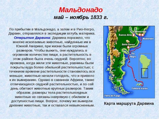 Мальдонадо май – ноябрь 1833 г. Карта маршрута Дарвина По прибытии в Мальдона...