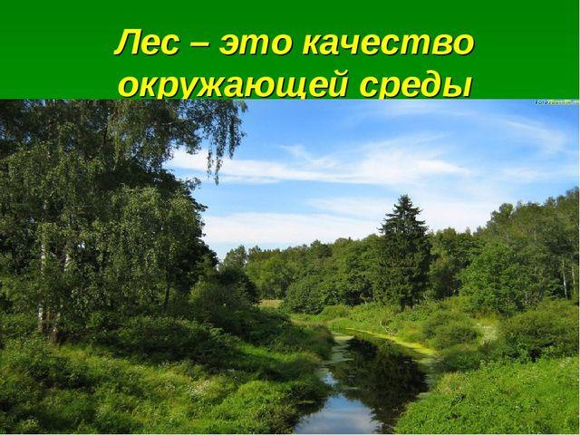 Лес – это качество окружающей среды