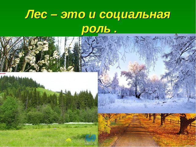 Лес – это и социальная роль .