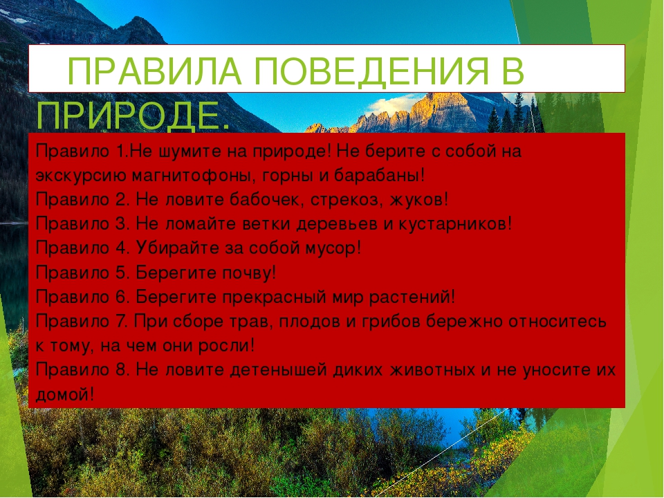 ПРАВИЛА ПОВЕДЕНИЯ В ПРИРОДЕ. Правило 1.Не шумите на природе! Не берите с соб...