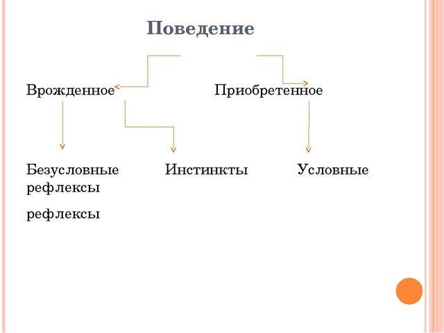 Поведение Врожденное Приобретенное Безусловные Инстинкты Условные рефлексы ре...