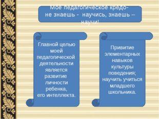 Главной целью моей педагогической деятельности является развитие личности реб