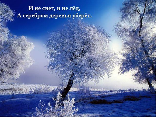 И не снег, и не лёд, А серебром деревья уберёт.
