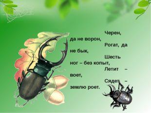 Черен, да не ворон, Рогат, да не бык, Шесть ног – без копыт, Летит – воет, Ся