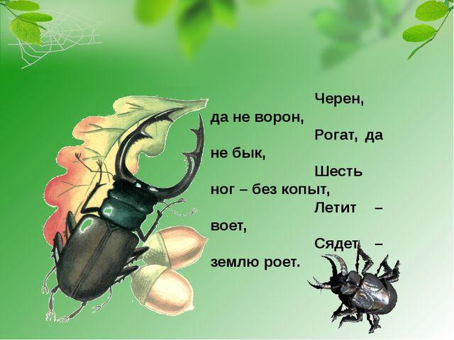 Черен, да не ворон, Рогат, да не бык, Шесть ног – без копыт, Летит – воет, Ся...