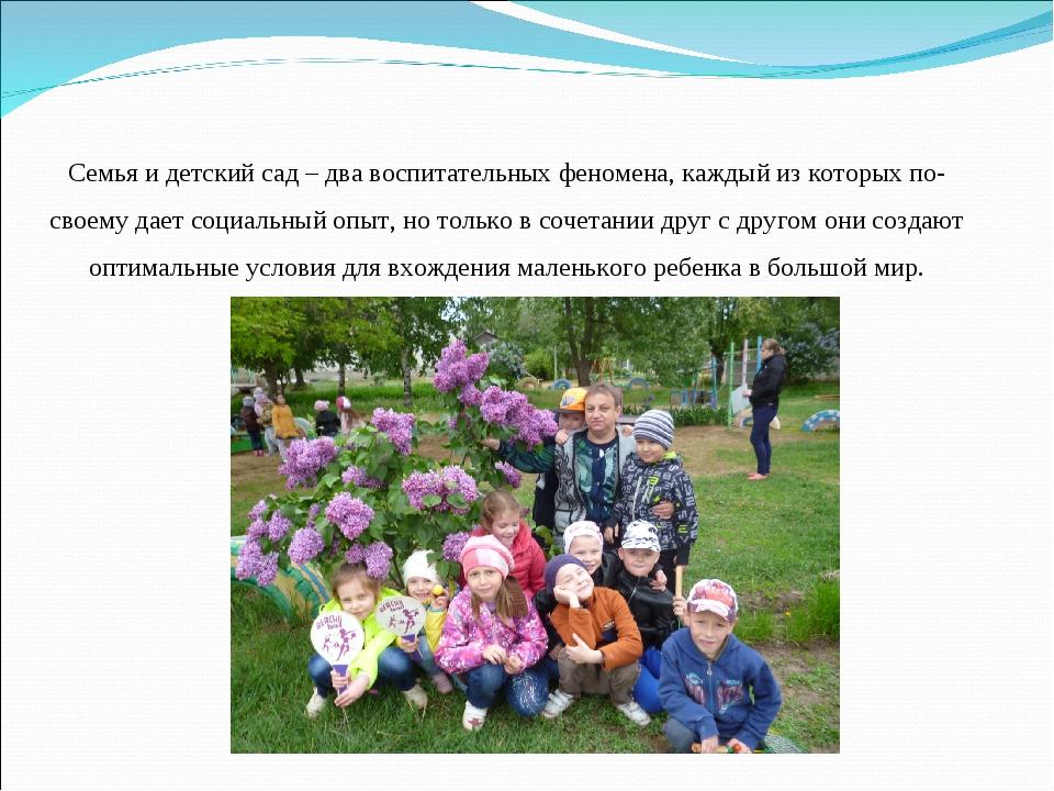 Семья и детский сад – два воспитательных феномена, каждый из которых по-свое...