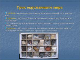 Урок окружающего мира 1 уровень- среди предложенных образцов найти гранит, ка
