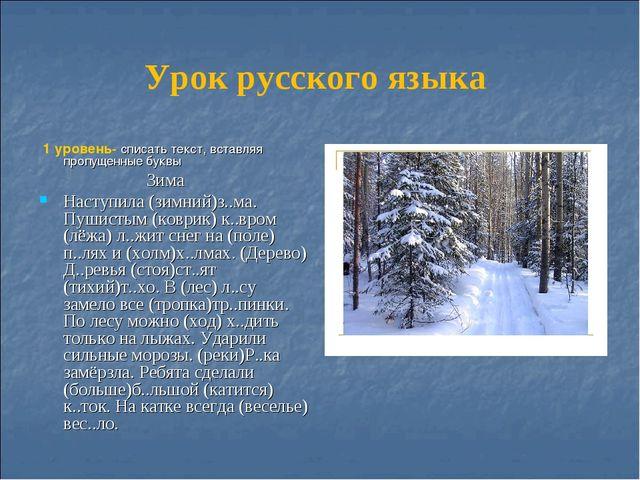 Урок русского языка 1 уровень- списать текст, вставляя пропущенные буквы Зима...