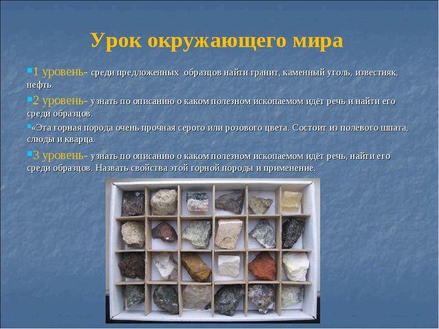 Урок окружающего мира 1 уровень- среди предложенных образцов найти гранит, ка...