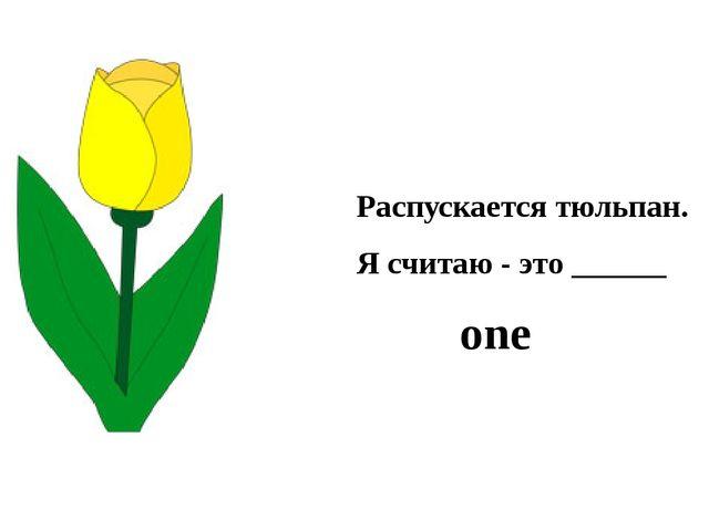 Распускается тюльпан. Я считаю - это ______ one