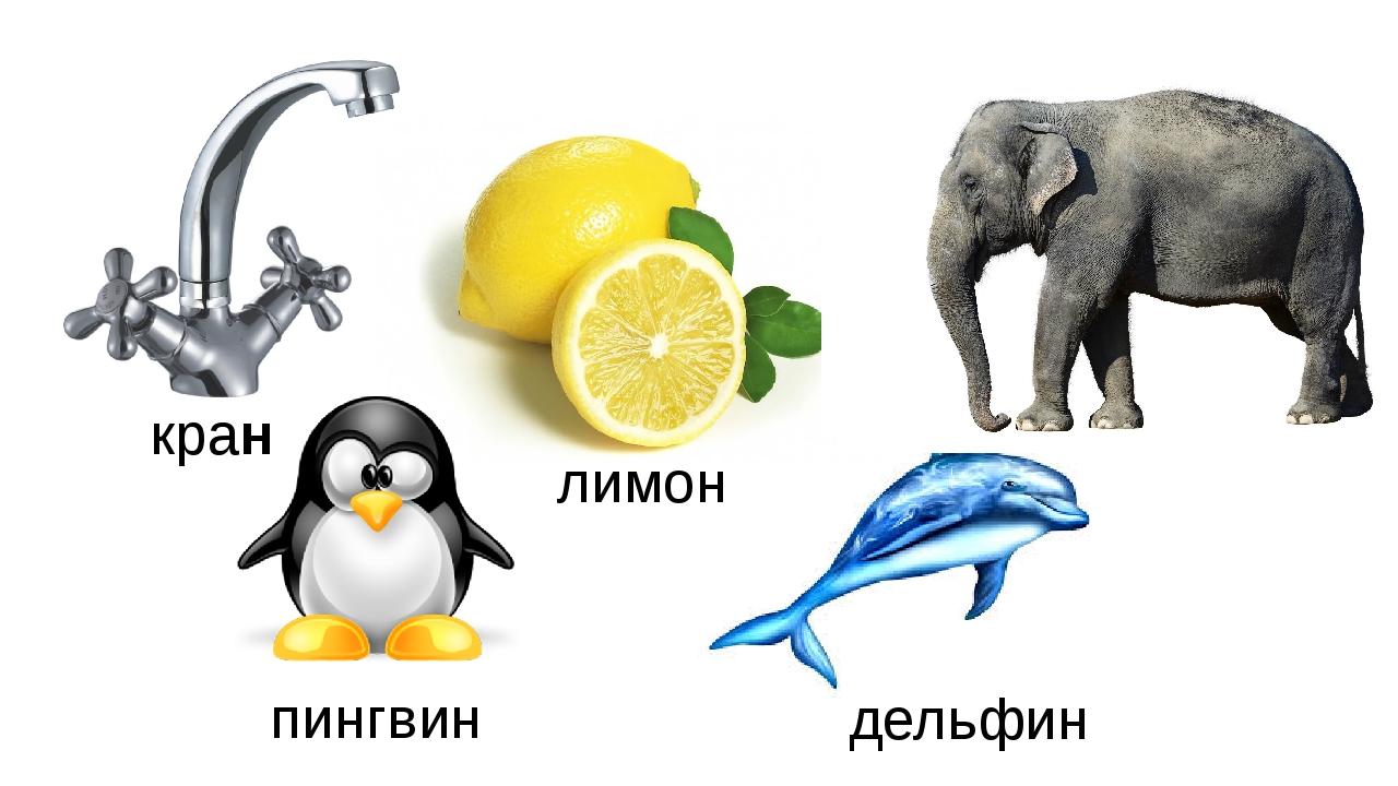 кран лимон слон пингвин дельфин
