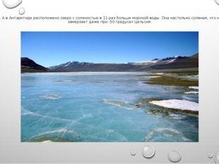 7. А в Антарктиде расположено озеро с соленостью в 11 раз больше морской воды