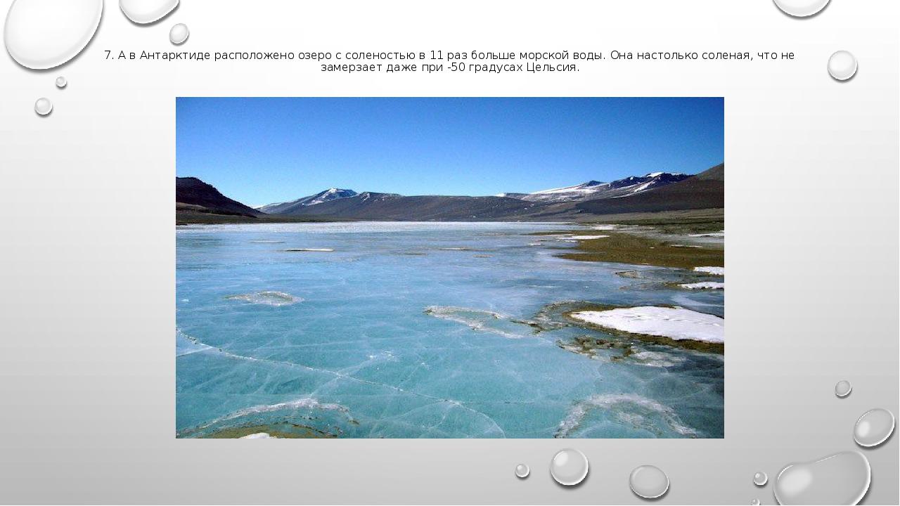 7. А в Антарктиде расположено озеро с соленостью в 11 раз больше морской воды...