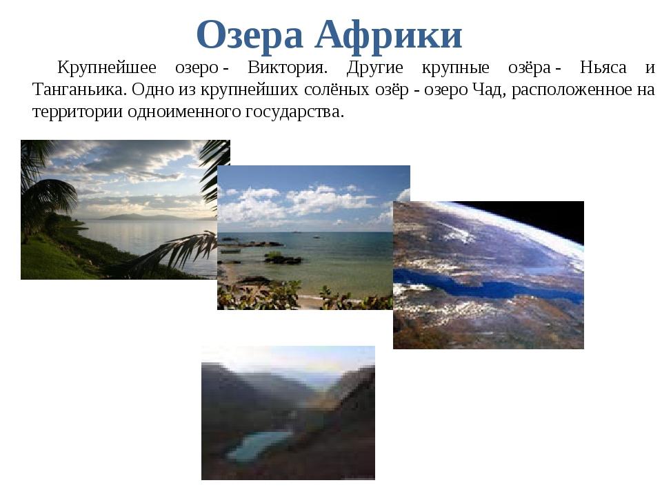 Озера Африки Крупнейшее озеро- Виктория. Другие крупные озёра- Ньяса и Танг...