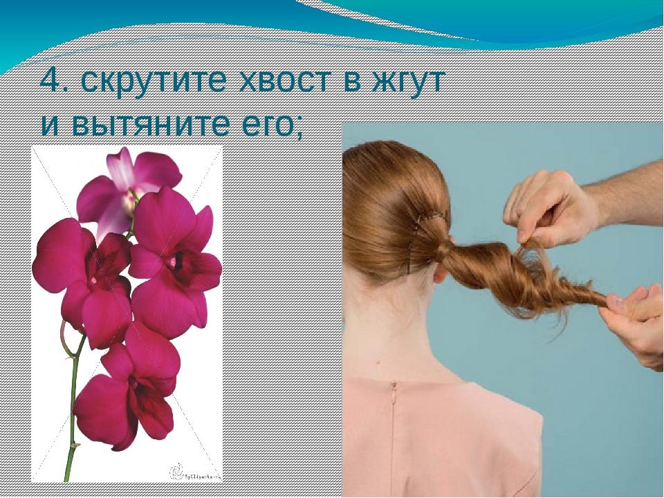 4. скрутите хвост в жгут и вытяните его;