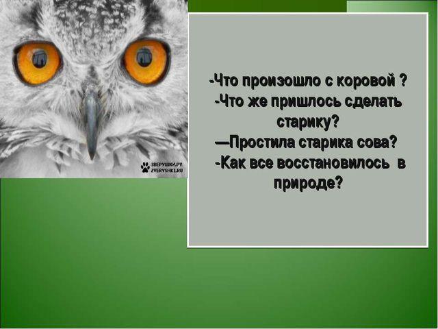 для презентация на сказку сова бианки занятий