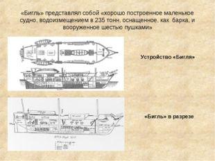 «Бигль» представлял собой «хорошо построенное маленькое судно, водоизмещением