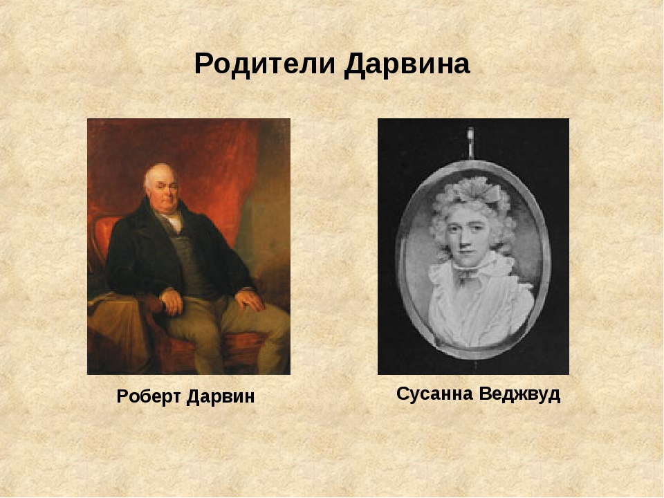 Родители Дарвина Роберт Дарвин Сусанна Веджвуд