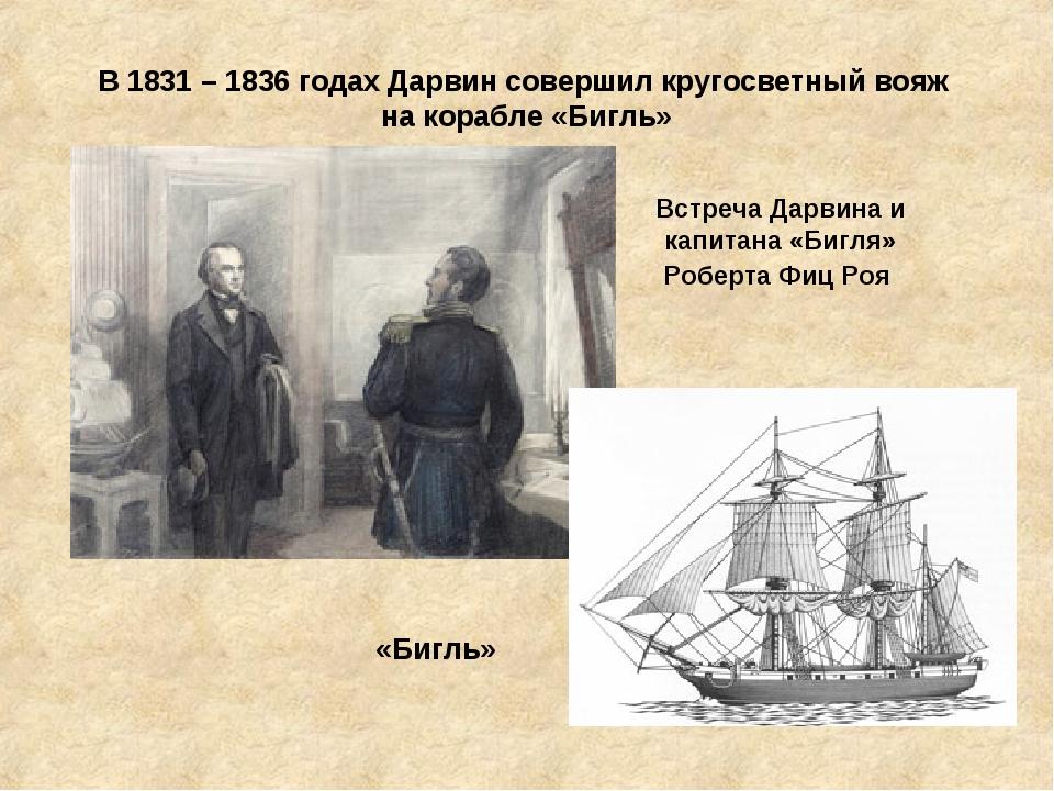 В 1831 – 1836 годах Дарвин совершил кругосветный вояж на корабле «Бигль» Встр...