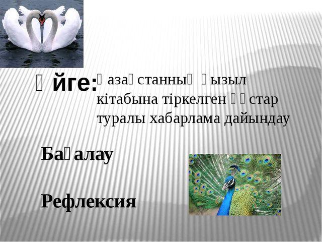 Үйге: Қазақстанның қызыл кітабына тіркелген құстар туралы хабарлама дайындау...