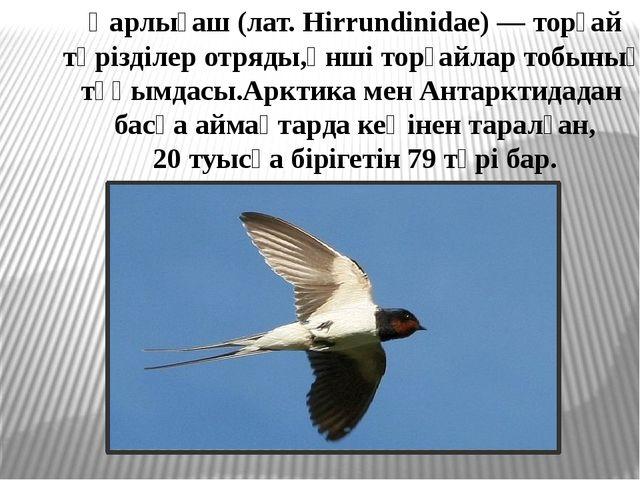 Қарлығаш (лат. Hirrundinidae) — торғай тәрізділер отряды,әнші торғайлар тобын...