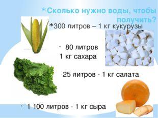 Сколько нужно воды, чтобы получить? 300 литров – 1 кг кукурузы 80 литров 1 кг