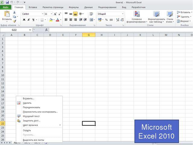 Microsoft Excel 2010