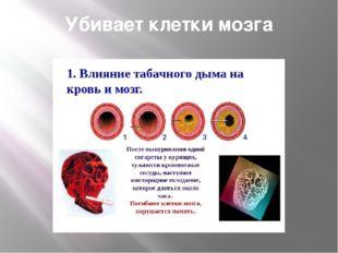Убивает клетки мозга
