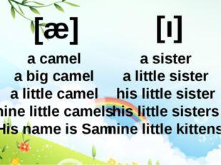 [æ] [ı] a camel a big camel a little camel nine little camels His name is Sam