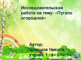 Исследовательская работа на тему: «Пугало огородное» Автор: Ширшов Никита уче